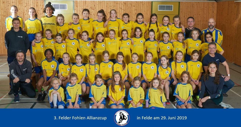 Felder - Fohlen